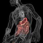 Опухоли эндокринных желез
