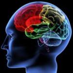 opuholi_mozga