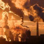 Влияние окружающей среды на развитие рака: миф или реальность